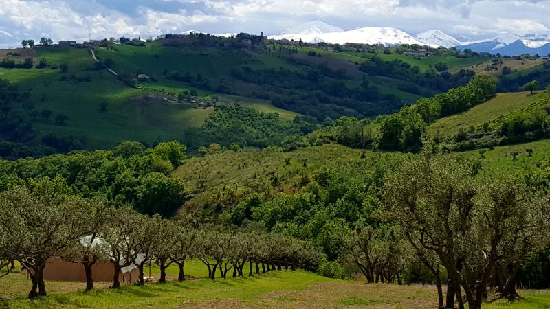 Camping44 uitzicht vanaf de bar, Camping44, agriturismo-camping Quarantaquattro, Loro Piceno, Le Marche, Italië